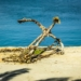 Retired Anchor in the Harbour of Koroni