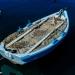 Swimming Carpet - Mediterranean Sea Story