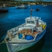 Fisherboats in the Harbour - Sea Story