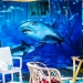 Shark Painting on Fisherboat - Mediterranean Spirit