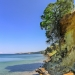 Hanging Tree on Coast Cliff with View to Koroni
