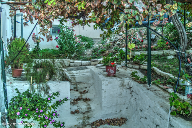 Garden Corner - Vasilitsi