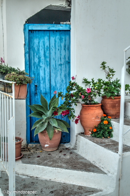 Blue Door Still Life - Vasilitsi