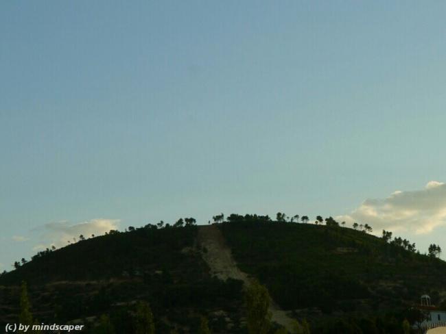 treed hill skyline